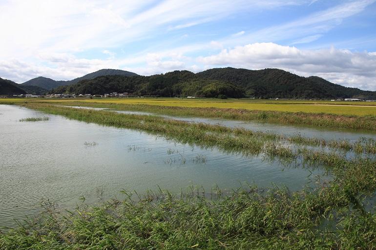 20150919近江八幡16-1a