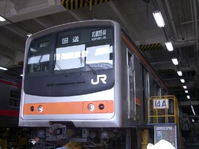 IMGP3534.jpg