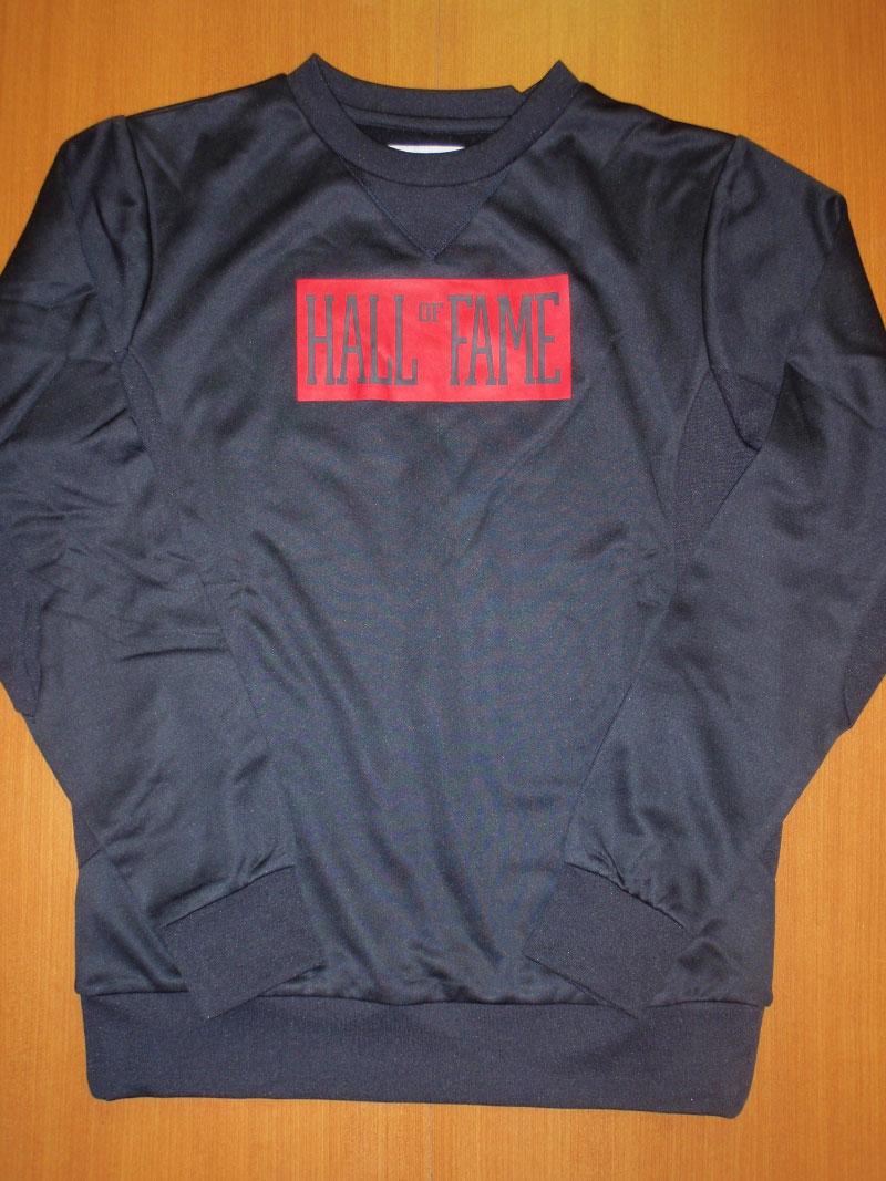 2015 Fall HALL OF FAME CrewNeck STREETWISE ホールオブフェイム クルーネック ストリートワイズ 神奈川 藤沢 湘南 スケート ファッション ストリートファッション ストリートブランド