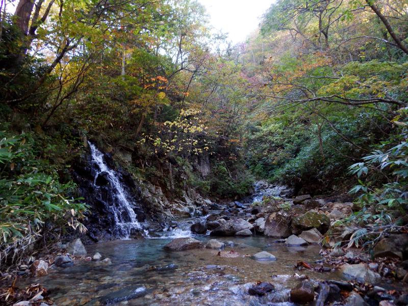 shiraoidake20151007-3695.jpg