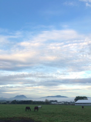 20150911 雲海広がるレイクヴィラファーム^^)