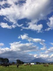 20150928 秋晴れのレイクヴィラファーム^^)