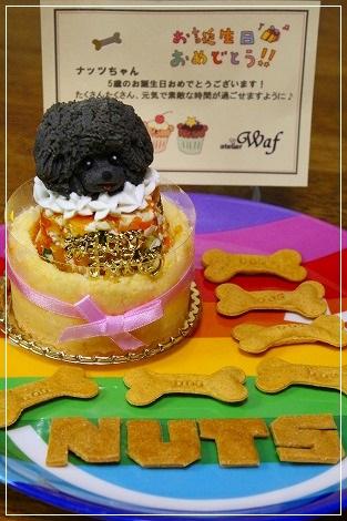 誕生日ケーキはワフさんでリベンジ★