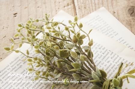 trial thyme blog
