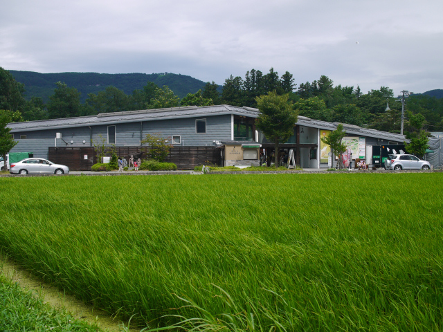 wasabinouen-02.jpg