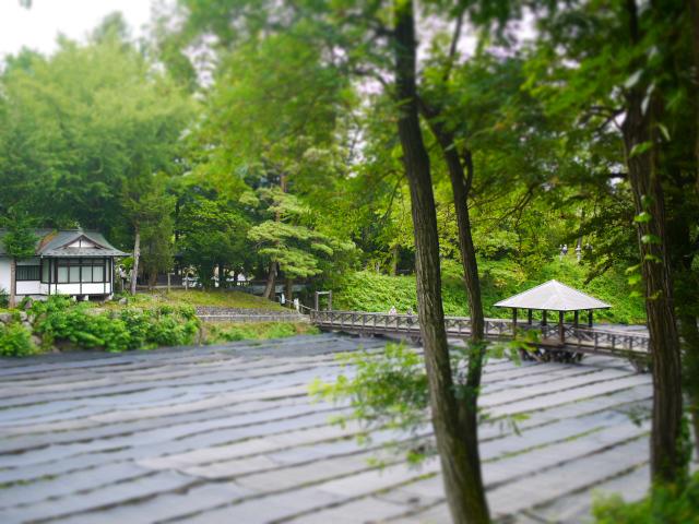wasabinouen-07.jpg