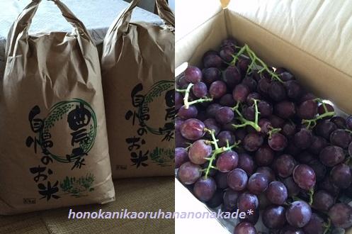 新米と葡萄