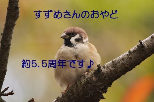 010_20151016035859454.jpg