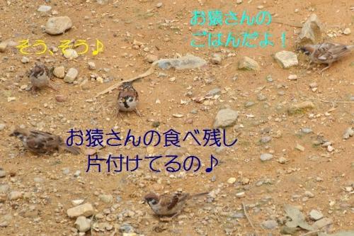060_20150919031507bff.jpg