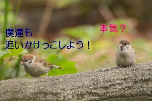 070_20150922192140ec3.jpg