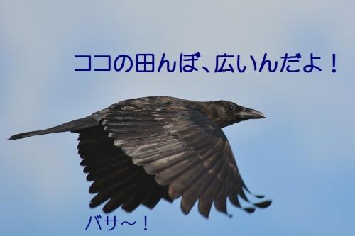 090_2015093017191069f.jpg