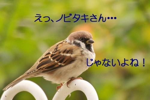 090_2015101919264507a.jpg