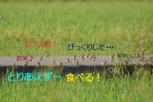 100_201509301719123ca.jpg