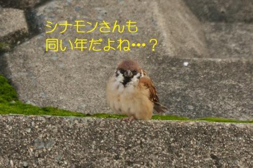 110_2015101819465872e.jpg