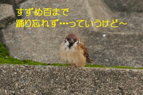 135_2015101819481522a.jpg