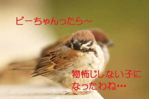 140_20151016040005c80.jpg