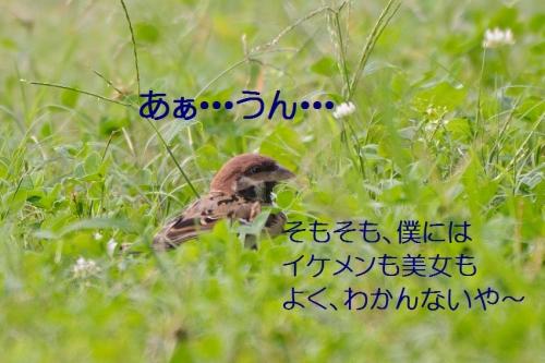 150_20151020193441786.jpg