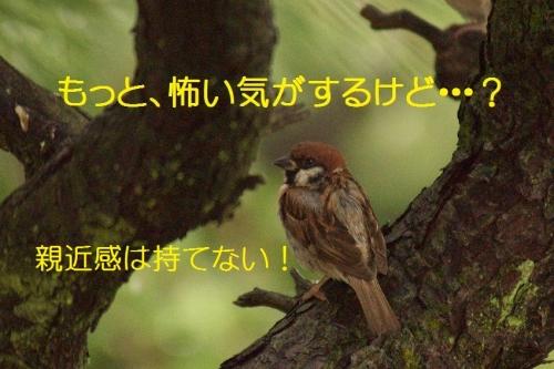 170_20150929192424049.jpg