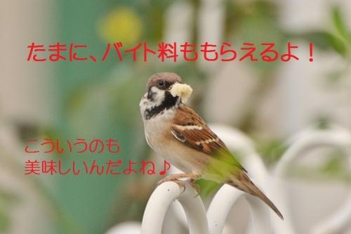 180_20151009184333981.jpg