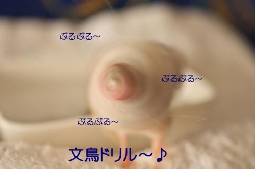 180_20151022174347bed.jpg