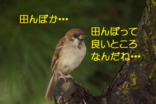 200_20150928212421c3b.jpg