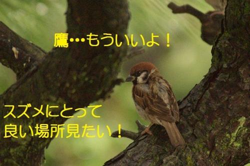 200_20150929192726b44.jpg