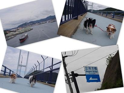 2015-09-25 水辺と女神大橋2