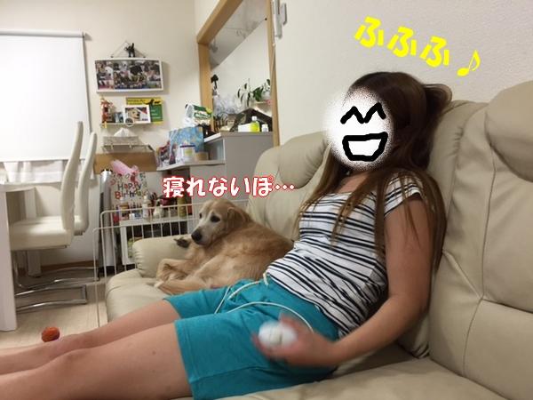 IMG_5177.jpg