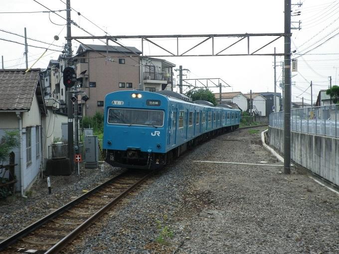 IMGP6265.jpg