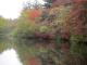 朝の雲場池
