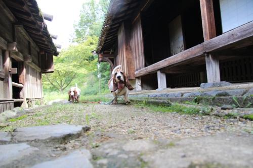 奈良民俗公園00011