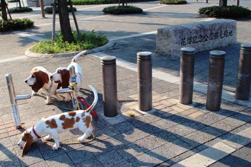 鶴見緑地00003