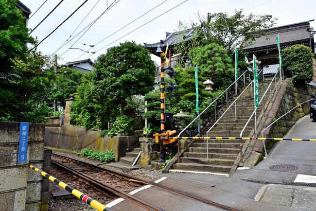 0003_manpukuji_kmakura_DSC_3929.jpg