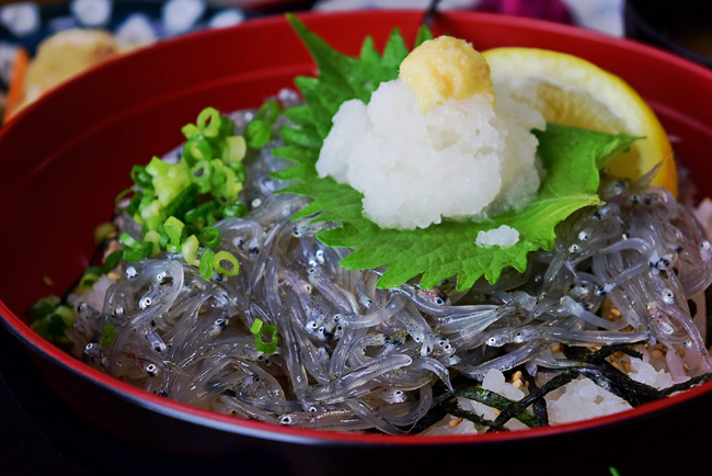 0050_manpukuji_kmakura_DSC_3713.jpg