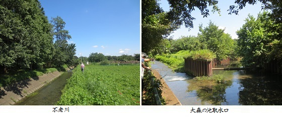b0919-1 不老川-大森池