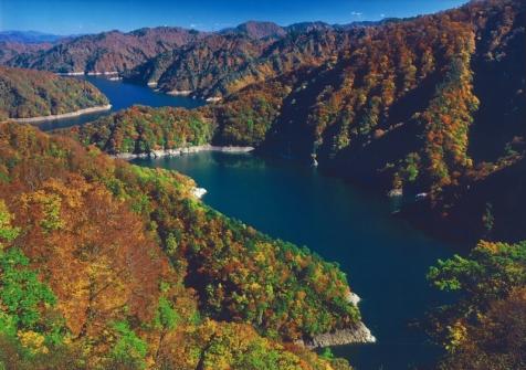 田子倉湖の秋彩