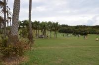 ガランピー公園の芝生150817