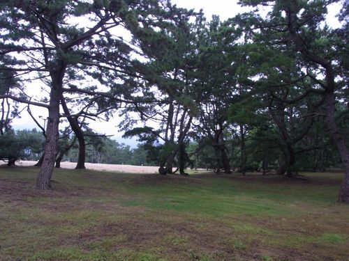 琴弾公園2