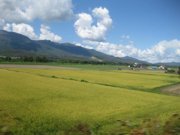 北海道83