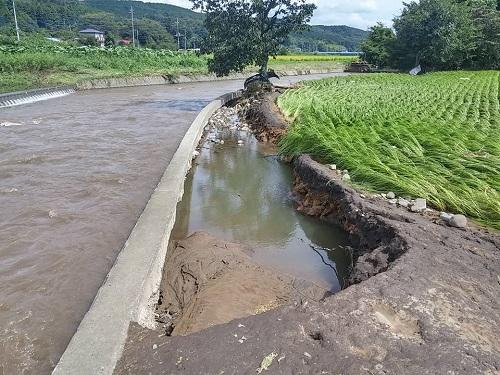 台風18号 災害<現地調査>!鹿沼市千渡地内 武子川⑤