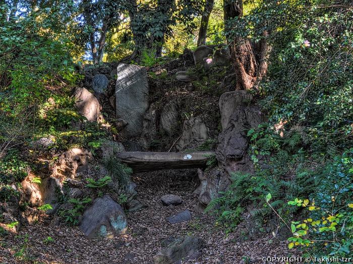 小石川植物園(御薬園跡及び養生所跡)