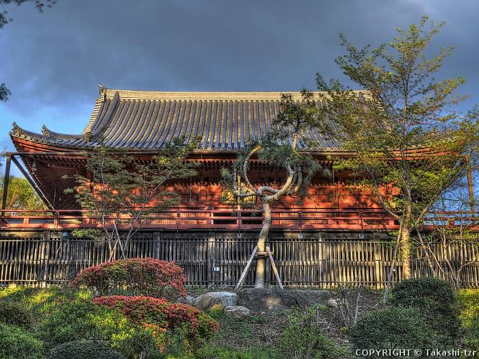 寛永寺清水堂