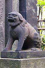 150818吾嬬神社連理の楠⑦