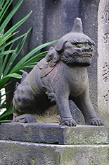 150818吾嬬神社連理の楠⑧