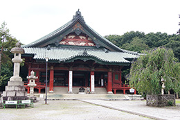 150903大光院の臥龍松⑦