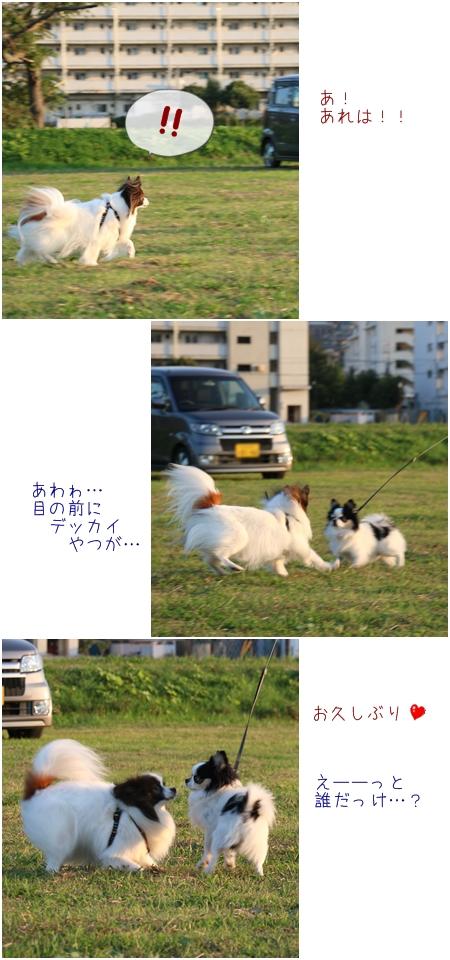 15-10-16up3.jpg