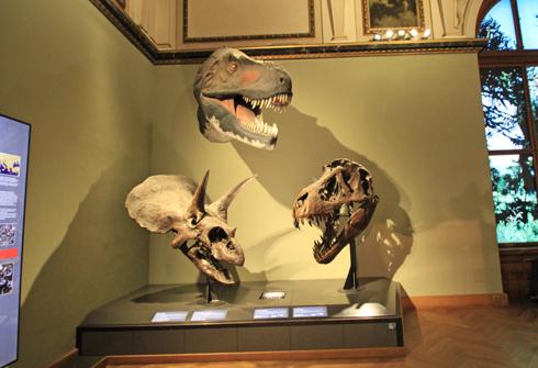 ウィーン自然史博物館見学紀(1)-22