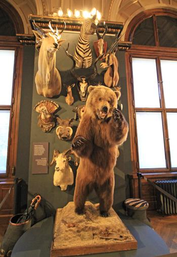ウィーン自然史博物館見学紀(2)-2