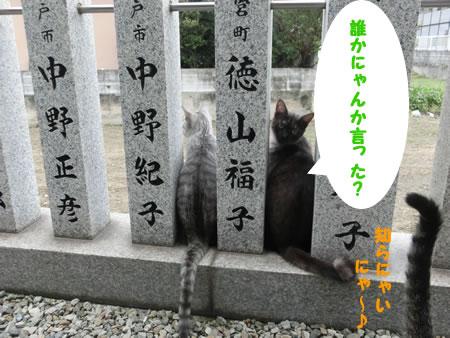 2015-09_09_03.jpg