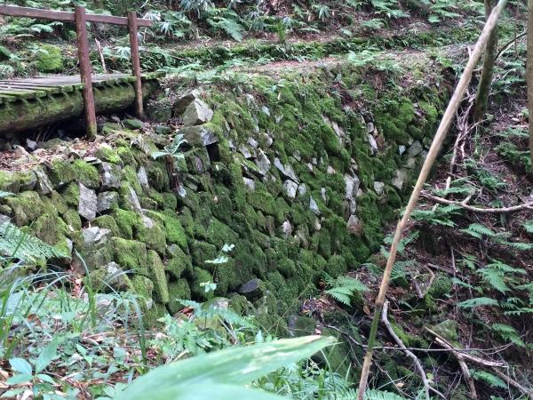 150913-水と緑2015秋二日目 (7)